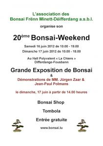 AFFICHE BONSAI WEEKEND 2012 fr.jpg