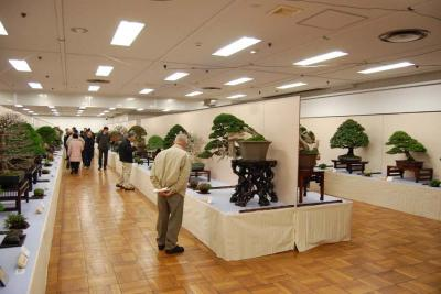 Kokufu 2011188.jpg