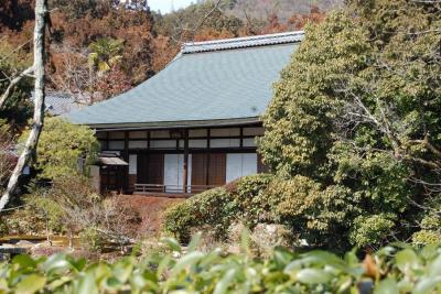 Ryoanji Kyoto 18.jpg