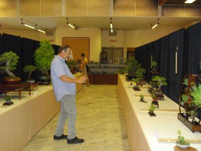 Expo Bonsai Peypin - 10 septembre 2011 069.jpg