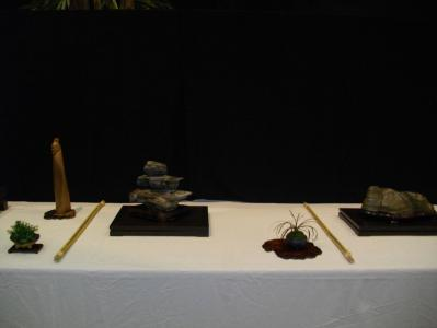 Expo Bonsai Peypin - 10 septembre 2011 027.jpg