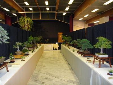 Expo Bonsai Peypin - 10 septembre 2011 073.jpg