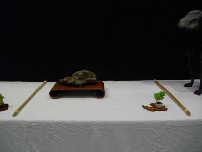 Expo Bonsai Peypin - 10 septembre 2011 029.jpg