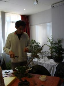 1er cours  de la premi�re classe Acadmemy Bonsai 13-14-15 octobre 2011 (24).JPG