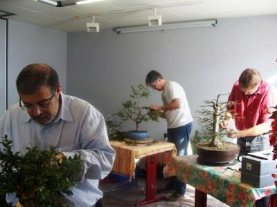 1er cours  de la premi�re classe Acadmemy Bonsai 13-14-15 octobre 2011 (44).JPG