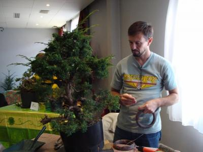 1er cours  de la premi�re classe Acadmemy Bonsai 13-14-15 octobre 2011 (26).JPG