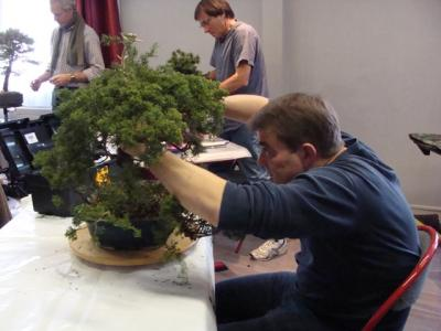 1er cours  de la premi�re classe Acadmemy Bonsai 13-14-15 octobre 2011 (25).JPG