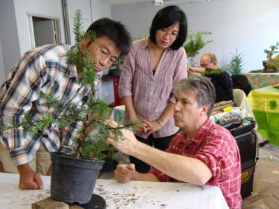 1er cours  de la premi�re classe Acadmemy Bonsai 13-14-15 octobre 2011 (19).JPG