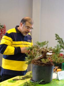 1er cours  de la premi�re classe Acadmemy Bonsai 13-14-15 octobre 2011 (17).JPG