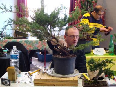 1er cours  de la premi�re classe Acadmemy Bonsai 13-14-15 octobre 2011 (18).JPG