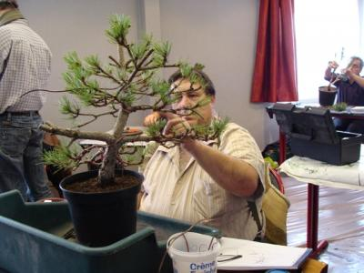 1er cours  de la premi�re classe Acadmemy Bonsai 13-14-15 octobre 2011 (22).JPG