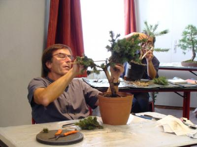 1er cours  de la premi�re classe Acadmemy Bonsai 13-14-15 octobre 2011 (21).JPG