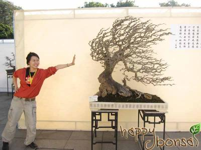 Penjing-Bonsai-Exhibition-106.jpg