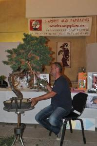 Expo Bonsai 2012 017.jpg
