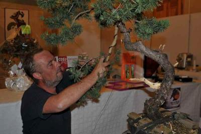 Expo Bonsai 2012 010.jpg