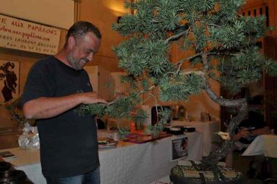 Expo Bonsai 2012 007.jpg