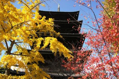 to-ji temple.JPG