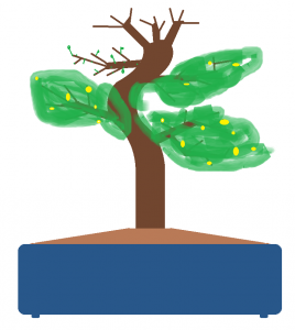 schema bonsai.png