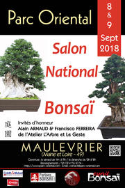 Salon_national_bonsai_2018.jpg
