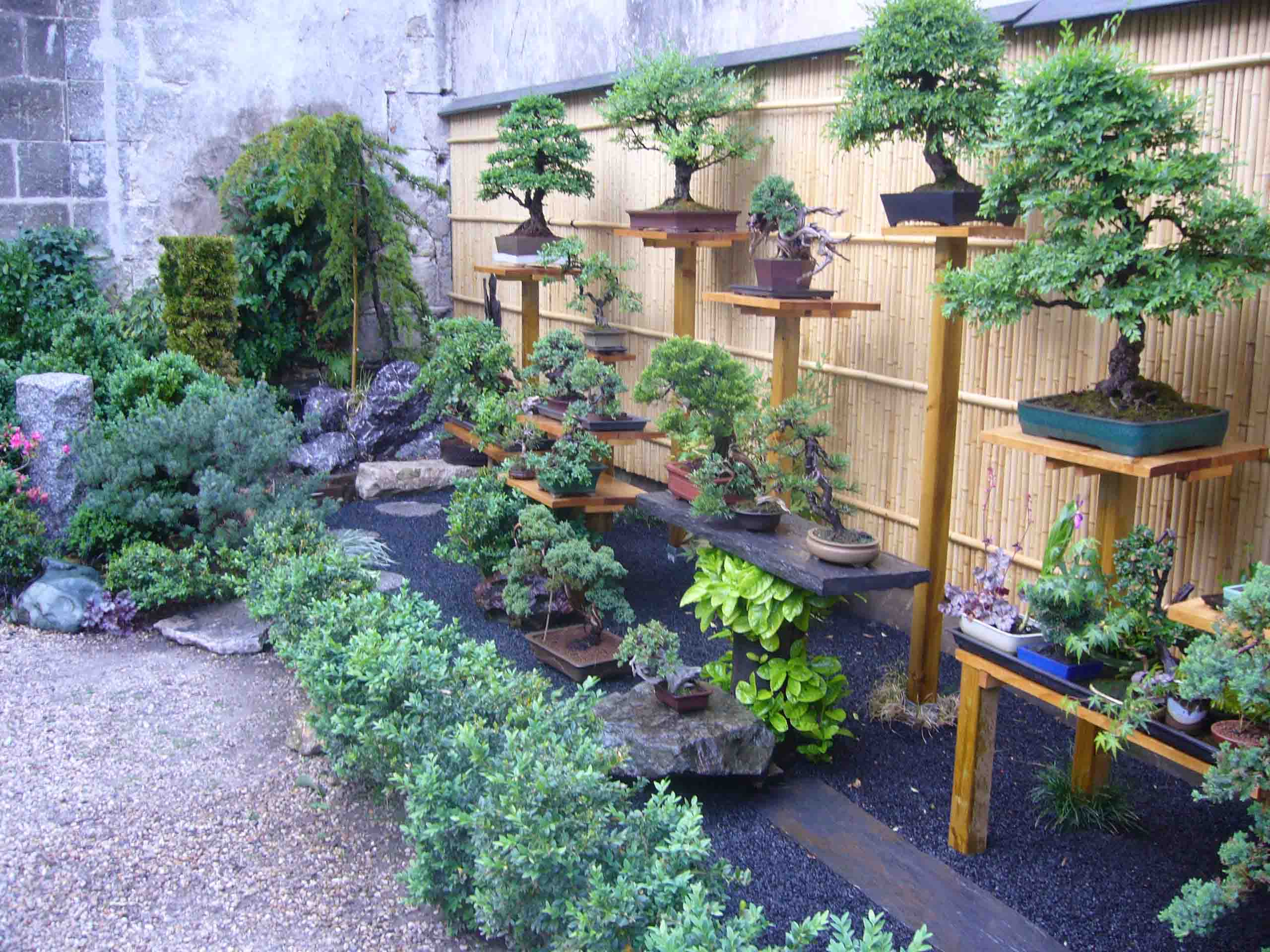 un jardin japonais g n ral forums parlons bonsai. Black Bedroom Furniture Sets. Home Design Ideas